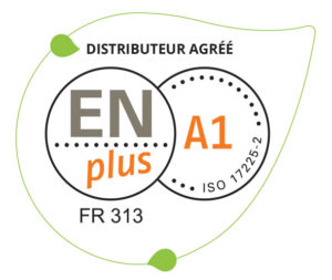 logo EN plus